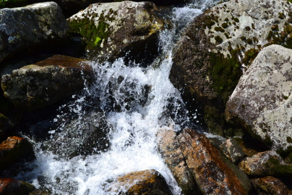 Река Артемьева