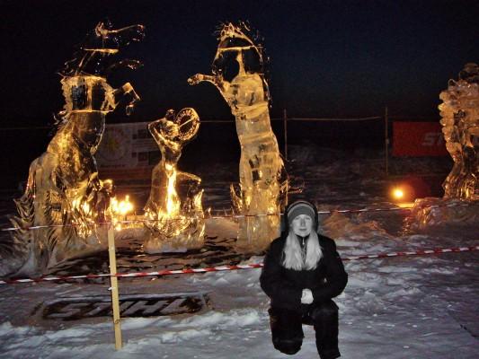 Хрустальная нерпа 2012